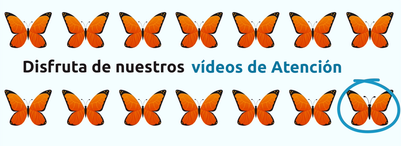 videos de atencion par aniños